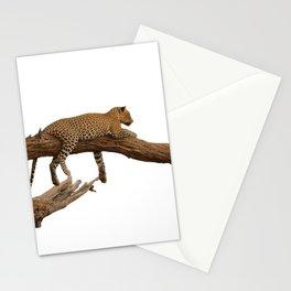Leopard on a branch Stationery Cards