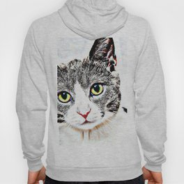 Purrfect (Perfect) Kitty Drawing Hoody