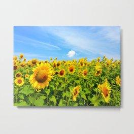 Sun Eating Flowers Metal Print