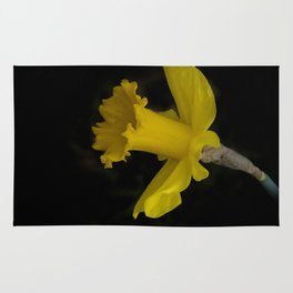 blossoms on black background -03- Rug