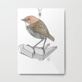 Chestnut Pitta Metal Print