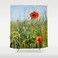 Poppies and Barley. Norfolk, UK. Shower Curtain