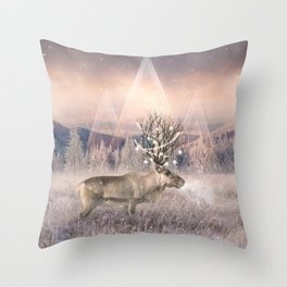 Stillness of Winter Throw Pillow