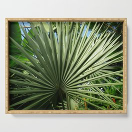 Fan Palm Serving Tray