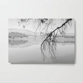 Magic Trees. Foggy Sunrise At The Lake. BW Metal Print