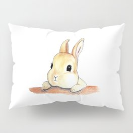 Blinking eyes are staring at you Pillow Sham