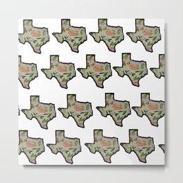 Texas White Background Metal Print