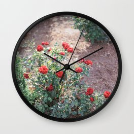 Red Roses in a Garden Wall Clock
