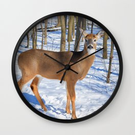 Deer in the Wintery Woods by Reay of Light Photography Wall Clock