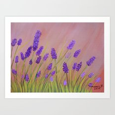 Lavenders  Art Print