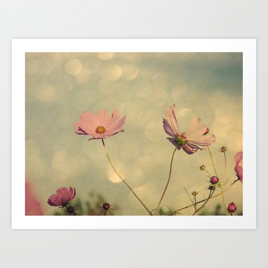 Cosmos in the Pink III Art Print