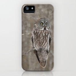 Great Grey Owl iPhone Case