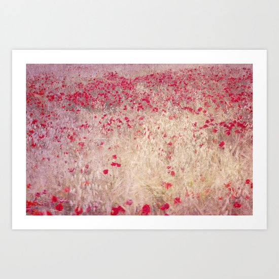 Fields of poppies Art Print