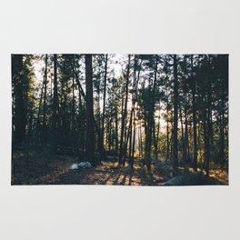 Trail Shadows Rug