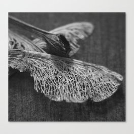 Fluid Nature - Wings Of A Tree Canvas Print