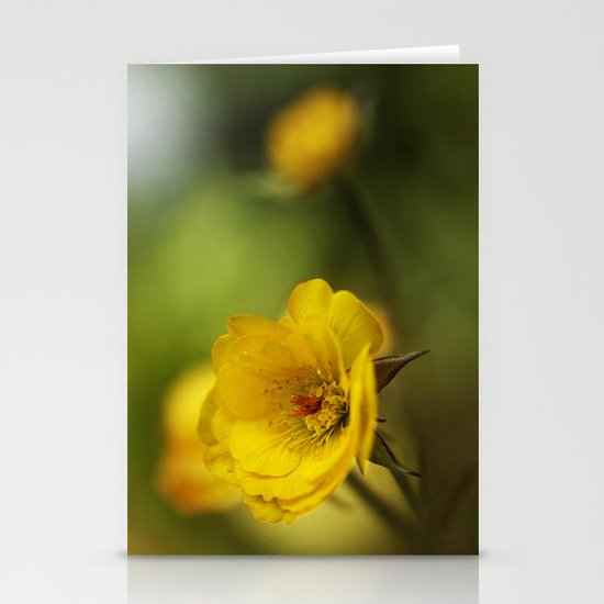 yellow. Stationery Cards