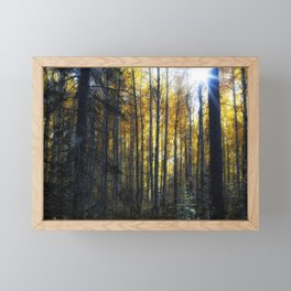 Shining Through Framed Mini Art Print