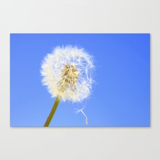 Wishing Flower Canvas Print
