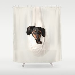 Bug in a rug Shower Curtain