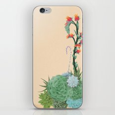 Beauty Lies in Sand iPhone & iPod Skin