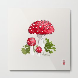 Amanita Muscaria (Fairy Toadstool) Metal Print