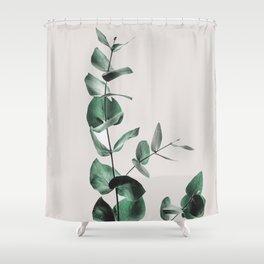 Eucalyptus Duschvorhang