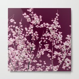 willow catkin III Metal Print