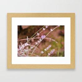 Art Of Flowers Framed Art Print