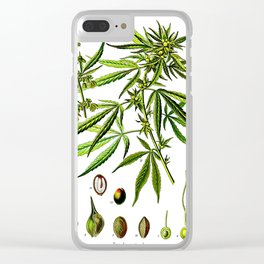 Cannabis Sativa - Koehler (1887) Clear iPhone Case
