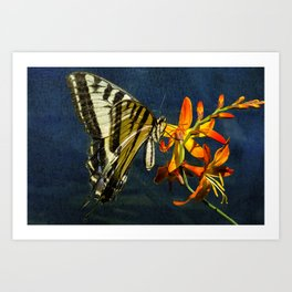 Swallowtail on the Crocosmia with Texture Art Print