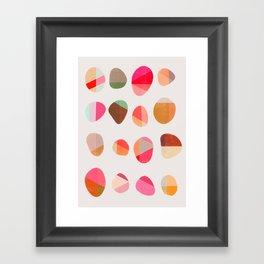 Painted Pebbles 5 Framed Art Print