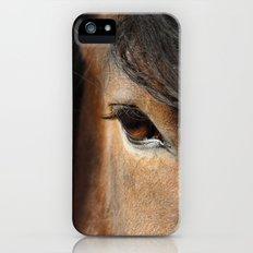horse iPhone (5, 5s) Slim Case