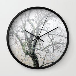 Naked tree surrounded by fog Wall Clock