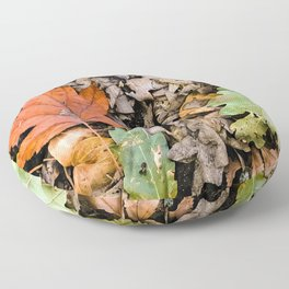 Autumnal leaves on the ground Floor Pillow
