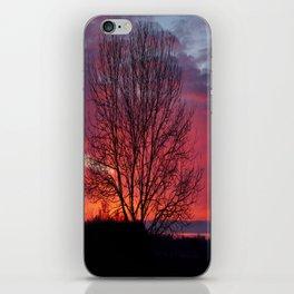 Autumn Sunrise At Chasewater iPhone Skin