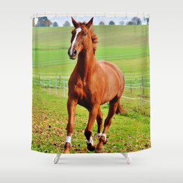 Horse Galloping On Meadow Ultra HD Shower Curtain