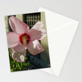 Pedaling Stationery Cards