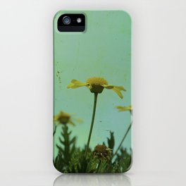 Fragile Flowers iPhone Case