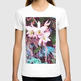 Three Beauties T-shirt