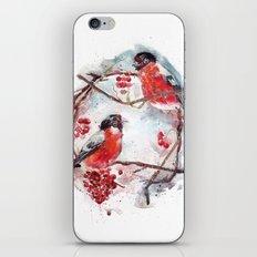 bullfinches iPhone & iPod Skin