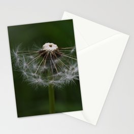 a half Stationery Cards
