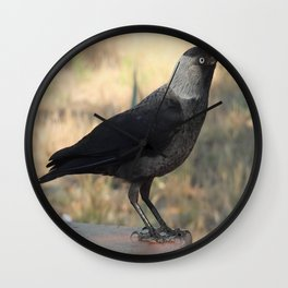 Side View Of A Wild Jackdaw Wall Clock
