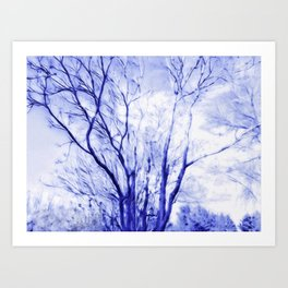 Blues In Winter Art Print