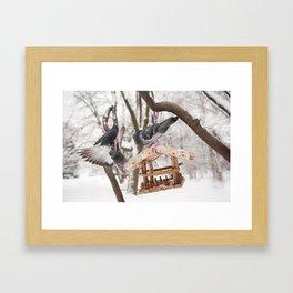 pigeons sitting on bird feeder Framed Art Print