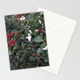 From a Winter's Walk Stationery Cards