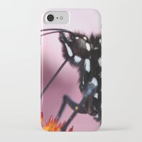 dentist iPhone & iPod Cases featuring Monarch Macro by IowaShots