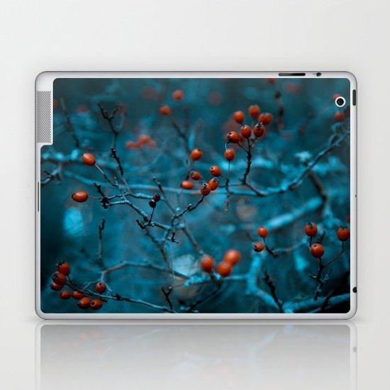 Winter Blue Laptop & iPad Skin