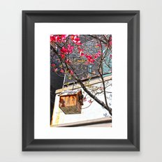 bird house 2 Framed Art Print