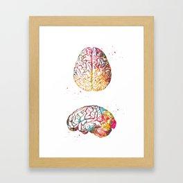 Skull and brain Framed Art Print