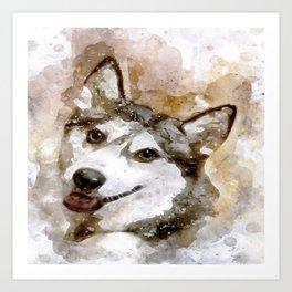 Tika'ani unser sibirischer Husky. Art Print